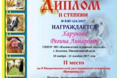 i_ryZAHxoaU