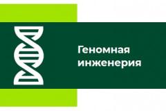 геномная-инженерия